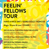 FEELIN' FELLOWS TOUR 2017